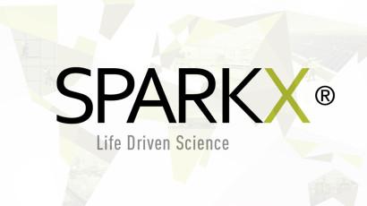 SPARKX Corporate Identity