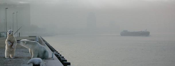 Wild-Rotterdam-05
